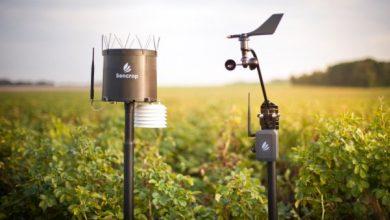 Photo of Sencrop es una plataforma de datos para ayudar a los agricultores a administrar sus tierras