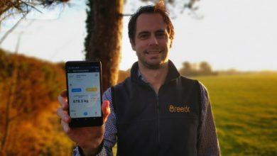 Photo of Breedr recauda £ 2M liderado por LocalGlobe por sus datos de ganado y su plataforma comercial