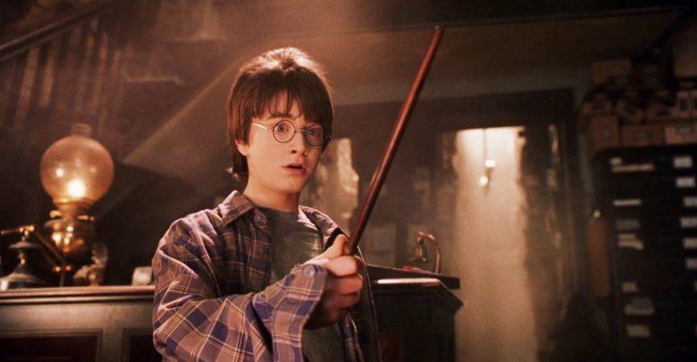 Cada Varita Mencionada En Harry Potter Y A Quién Pertenece La Neta Neta