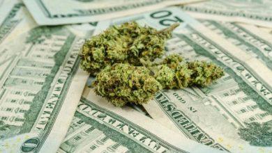 Photo of La reforma bancaria del cannabis es inteligente, necesaria y políticamente viable.