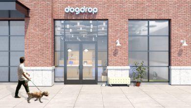Photo of Dogdrop está lanzando una guardería para perros en Wag Hotels