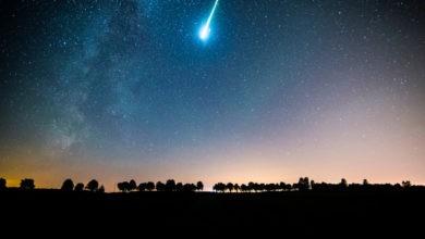 Photo of Tiny adquiere Meteor
