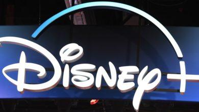 Photo of Guía de transmisión 2019: ¿Debería registrarse en Disney +?