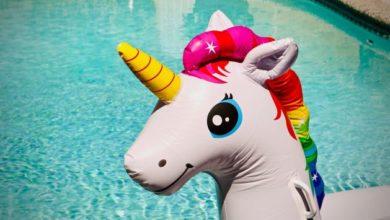 Photo of El año de los unicornios franceses.