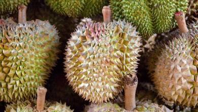 Photo of La fruta que huele a trasero podría cargar tu iPhone