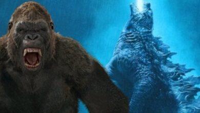 Photo of Godzilla vs Kong descarta retrasar los rumores con una nueva actualización