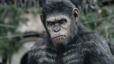 Photo of El director de New Planet of the Apes habla sobre la última secuela con Disney
