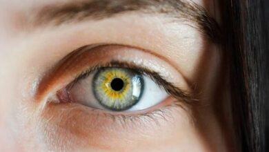 Ensalzar la mirada a través de tus cejas 10