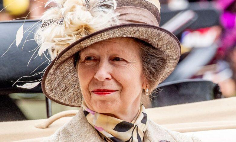 Así le enseñó Ana de Inglaterra a usar las videollamadas a su madre, Isabel II 1