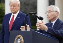 Photo of Estados Unidos: Trump se enoja con Fauci mientras escalan los casos de coronavirus