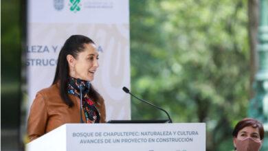 Photo of Destaca Sheinbaum inversión histórica de mil mdp para rescatar al Bosque de Chapultepec