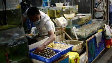 Photo of Autoridades chinas encuentran Covid-19 en camarones ecuatorianos