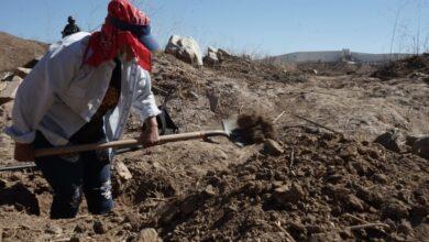 Photo of Buscadoras de desaparecidos hallan restos en tambos de basura en Tijuana | Fotos