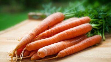 Photo of Estos son los principales beneficios de la zanahoria para la piel