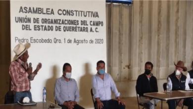 """Photo of Nace """"Unión de Organizaciones del Campo del Estado de Querétaro A.C."""", integradas 45 organizaciones de 11 municipios"""
