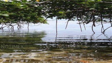 Photo of Panamá va por la inversión verde tras contingencia por COVID-19