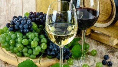 Photo of 4 vinos para celebrar la llegada del mes de agosto