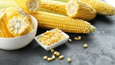 Photo of ¿Engordan las tortitas de maíz?