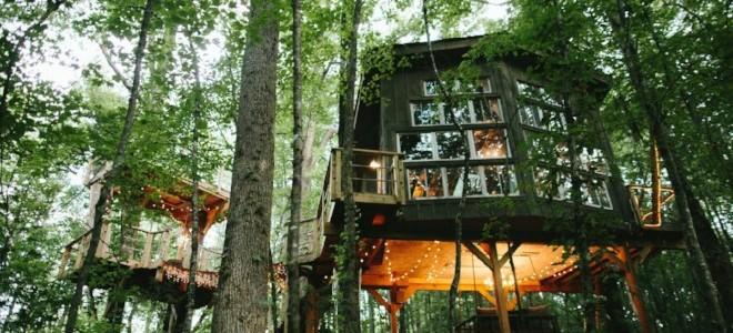 Casas en alquiler en 6 Tree 4