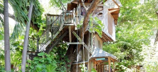 Casas en alquiler en 6 Tree 5