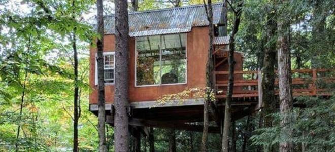 Casas en alquiler en 6 Tree 8